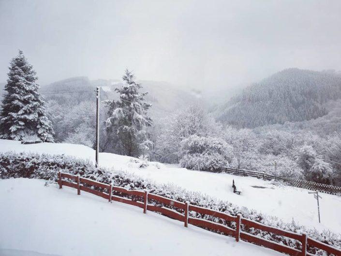 Wintersport in Dedenborn Noord Eifel, omgeving monschau Winter Skien dicht bij huis
